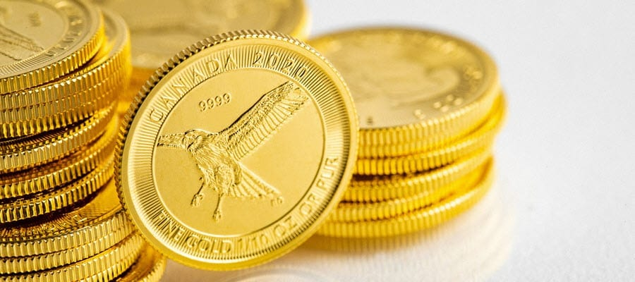 Canadian Gold Red-Tailed Hawk Coin